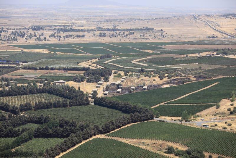 Camps et ligne de cessez-le-feu cultivés par Israélien photo libre de droits