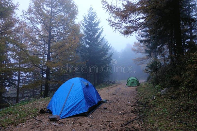 campsite стоковое фото