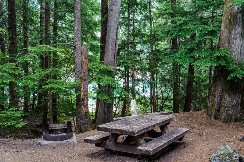 Campsite of of North Cascades National Park royalty free stock photos
