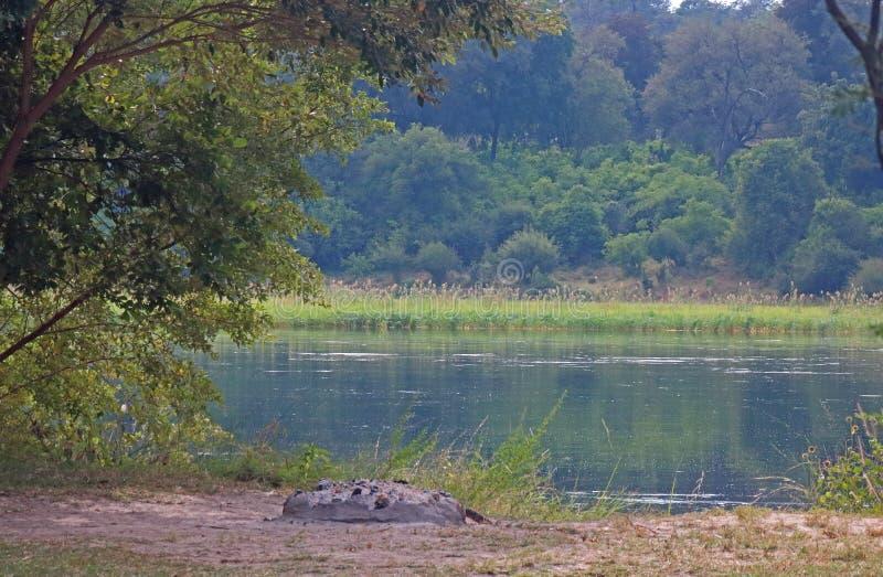CAMPSITE OBOK OKAVANGO rzeki zdjęcie stock