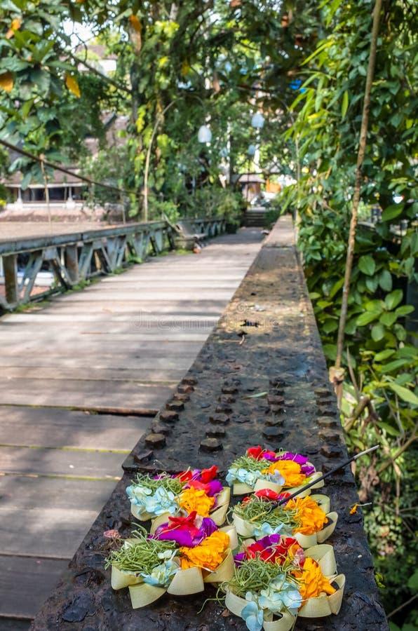 Campuhan桥梁在Ubud巴厘岛 图库摄影