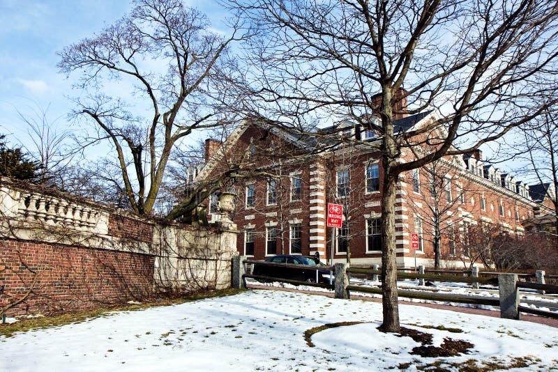 Campus de Harvard imágenes de archivo libres de regalías