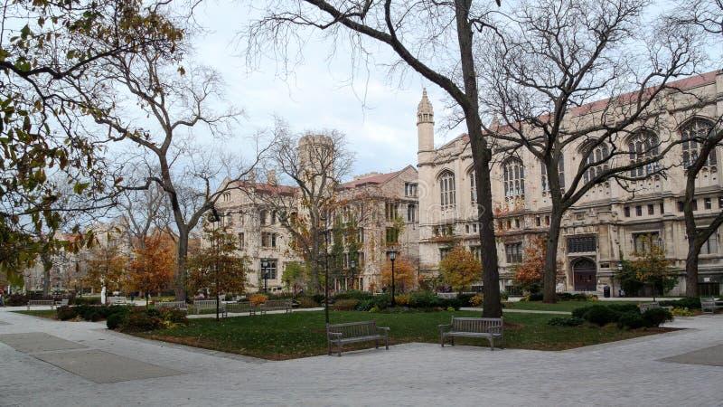 Campus de la Universidad de Chicago imagen de archivo libre de regalías