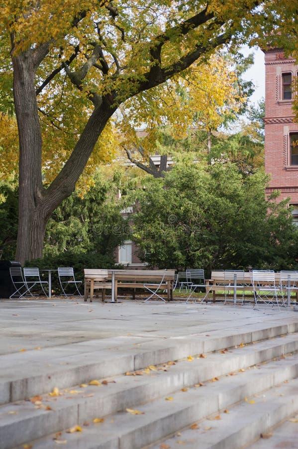 Campus de Universidad de Harvard imagen de archivo libre de regalías
