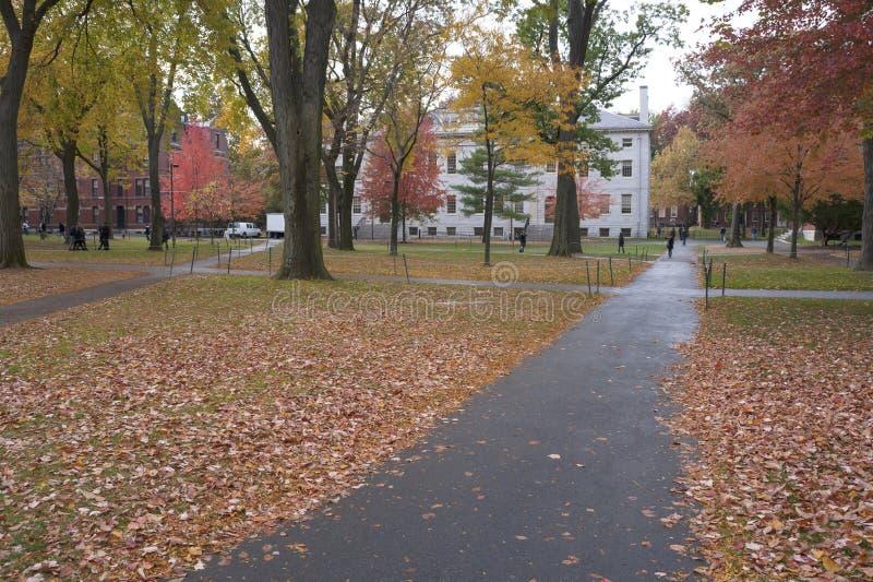 Campus de Universidad de Harvard foto de archivo