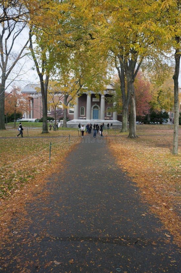 Campus de Universidad de Harvard fotos de archivo