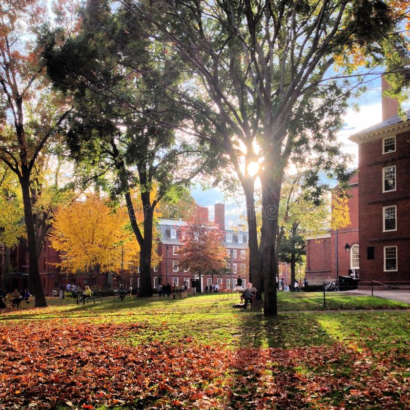 Campus de Universidad de Harvard imagen de archivo