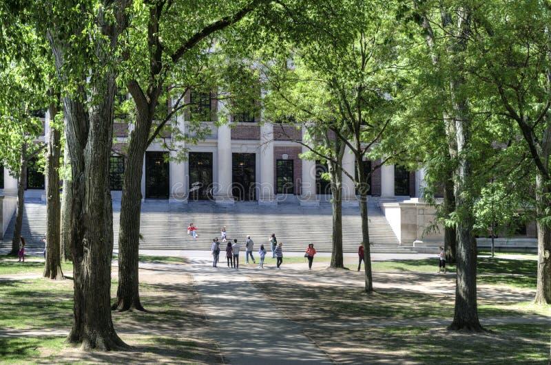 Campus de Universidad de Harvard, Cambridge, los E.E.U.U. foto de archivo libre de regalías