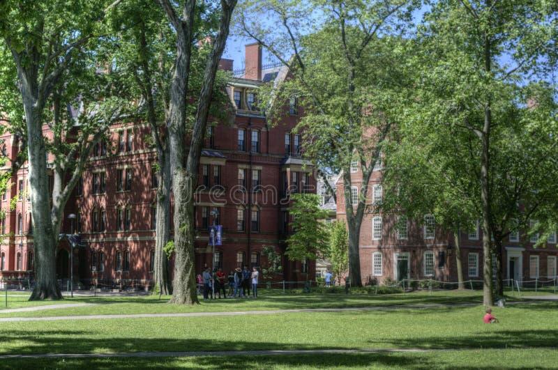 Campus de Universidad de Harvard, Cambridge, los E.E.U.U. fotografía de archivo libre de regalías
