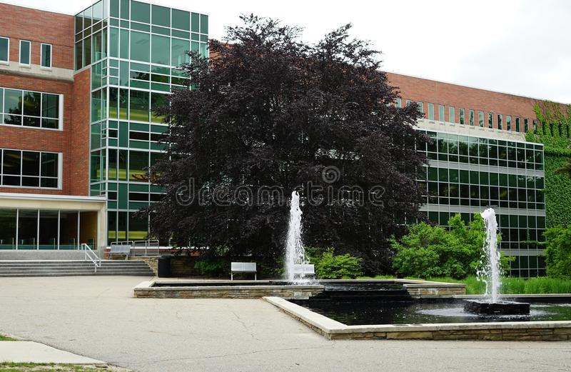 The campus of Michigan State University in East Lansing, MI. EAST LANSING, MI - Founded in 1855 as the Agricultural College of the State of Michigan, Michigan royalty free stock images