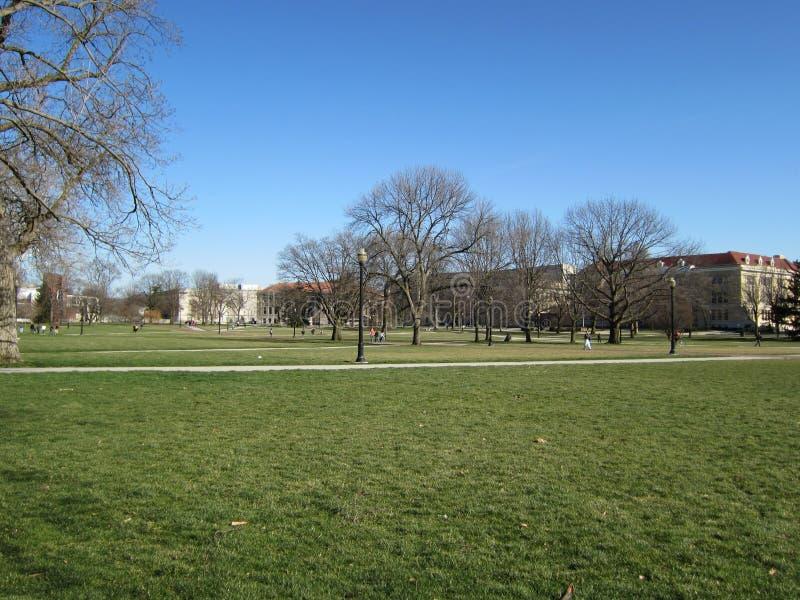 Campus-Rasenfläche lizenzfreie stockfotografie