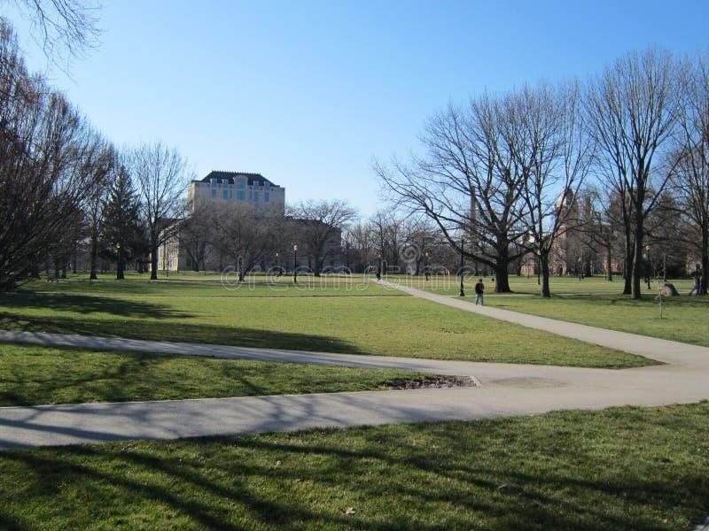 Campus universitaire photos libres de droits