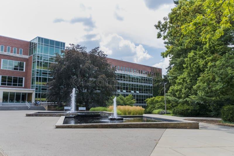 Campus universitaire d'État du Michigan photographie stock