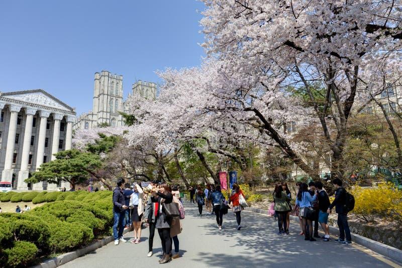 Campus universitario coreano foto de archivo libre de regalías