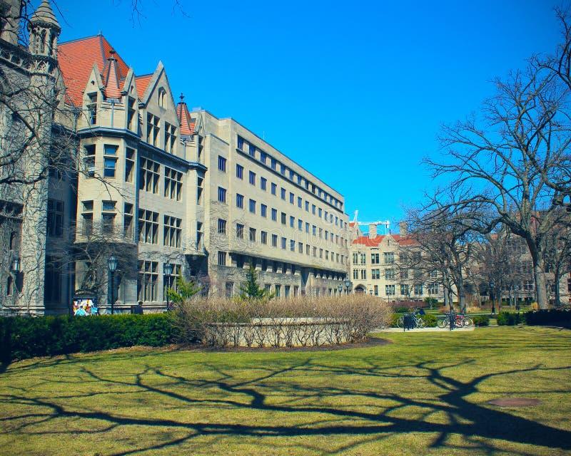 Campus universitario di Chicago immagine stock libera da diritti