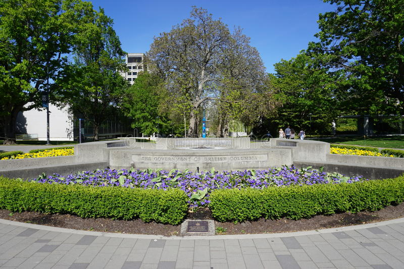 The campus of the University of British Columbia (UBC). VANCOUVER, CA - Located on a beautiful peninsula at Point Grey, the University of British Columbia (UBC) royalty free stock image