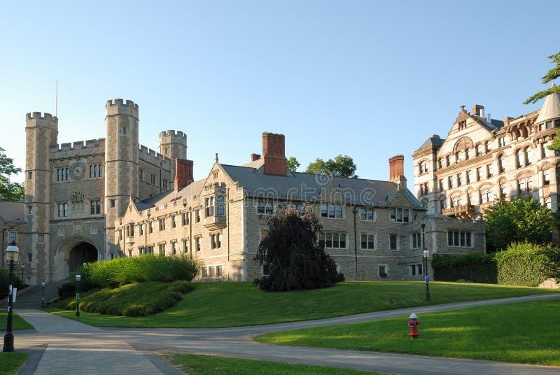 Campus van Universiteit Princeton in New Jersey stock afbeeldingen