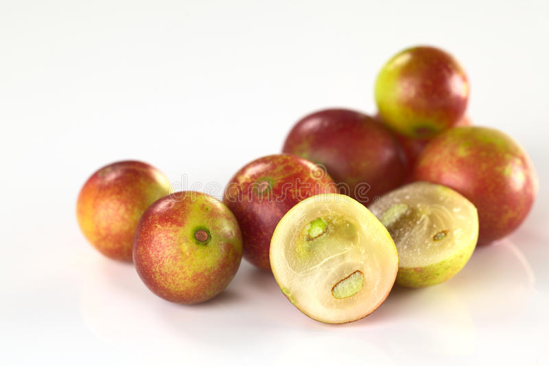 Camu Camu. Berry fruits (lat. Myrciaria dubia) which are grown in the Amazon region and have a very high Vitamin C content (Selective Focus, Focus on the half