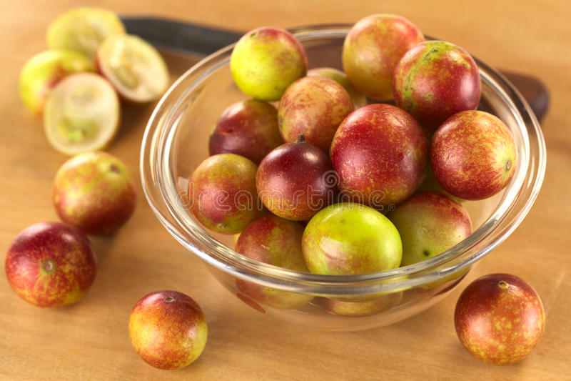 Camu Camu photos stock