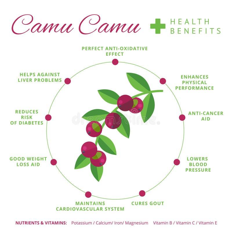 Camu camu jagodowi świadczenia zdrowotne i odżywiania infographics Supe ilustracji
