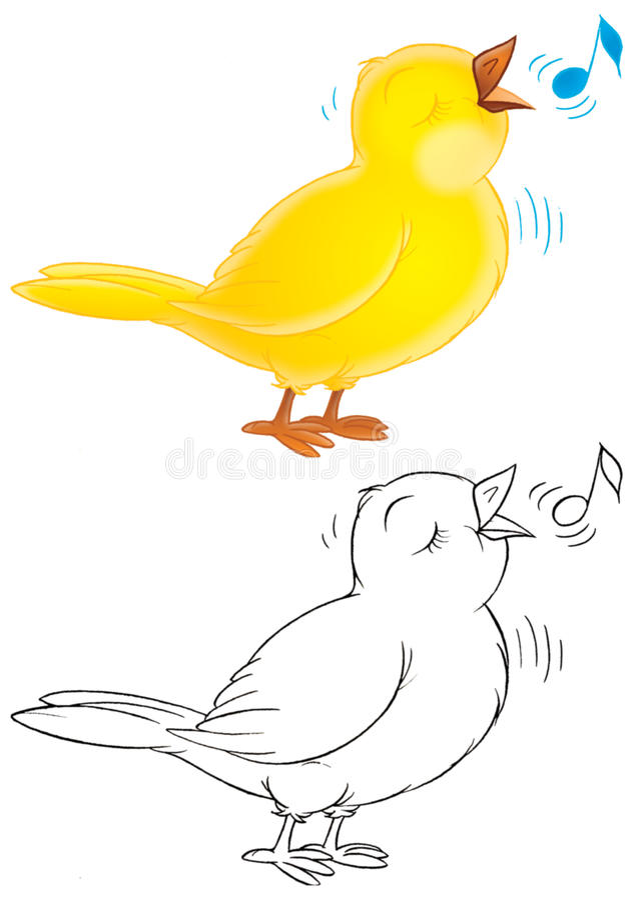 Canário ilustração do vetor
