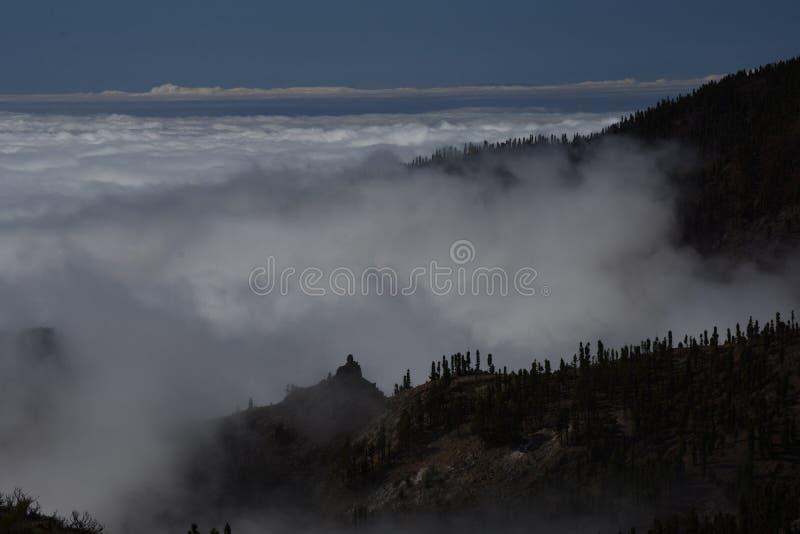 Canário de Insel Wyspy Kanaryjskie do teneryfa do vulcão de Teide imagens de stock
