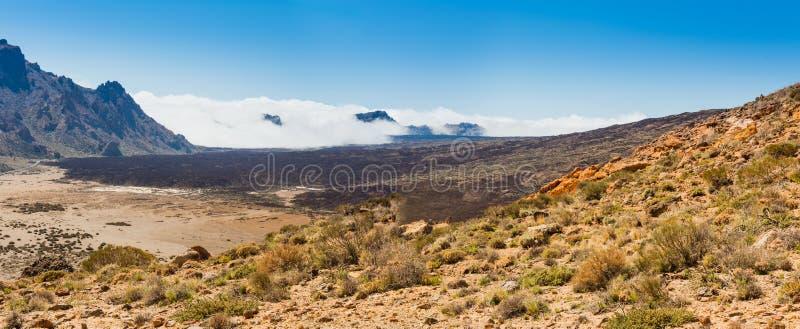 Canário de Tenerife do vulcão de Teide da paisagem da lava fotos de stock