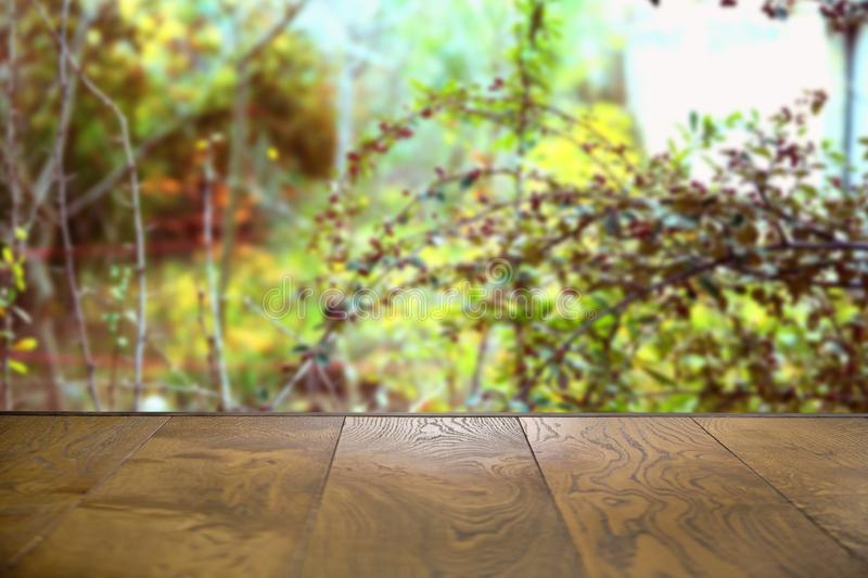 Can be used for display or montage your products.Mock up for display of product . Autumn Wooden board empty table in front of royalty free stock photos