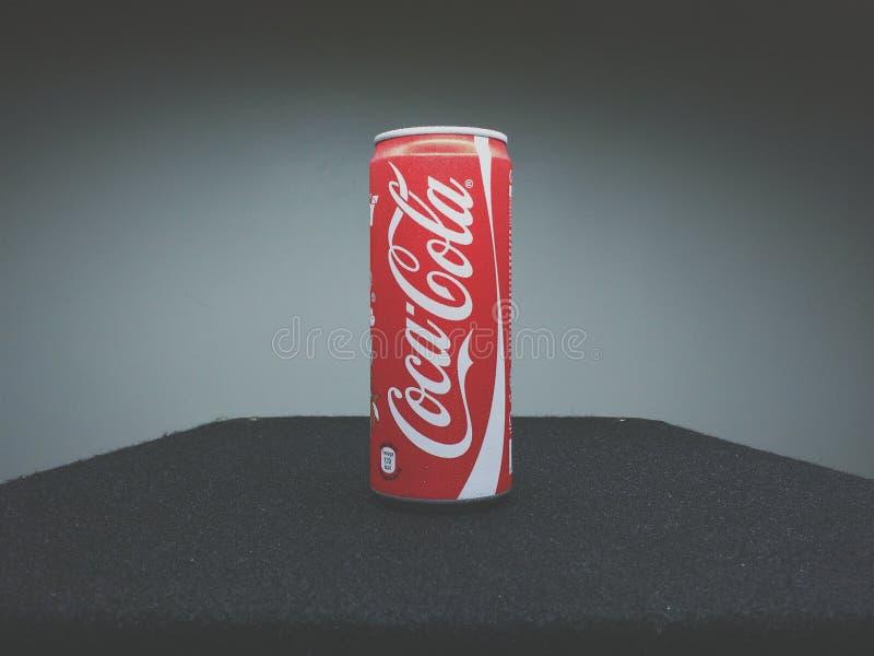 Can Of Coca-cola Free Public Domain Cc0 Image