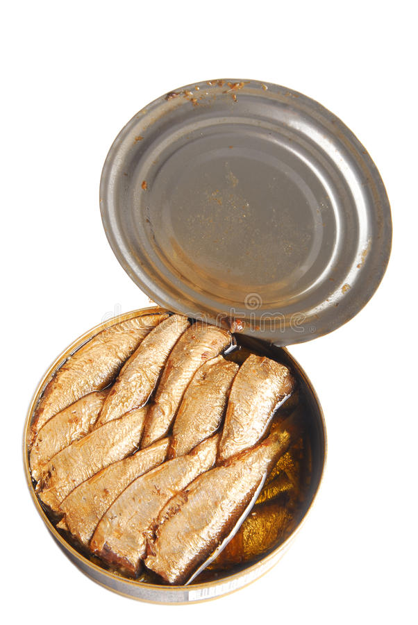 Free Can Of Sprats In Oil Isolated Stock Photos - 49592753