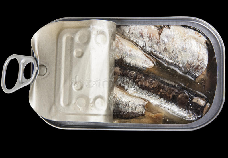 Can of sardines. Open a can of sardines isolated on black background with clipping path royalty free stock photos