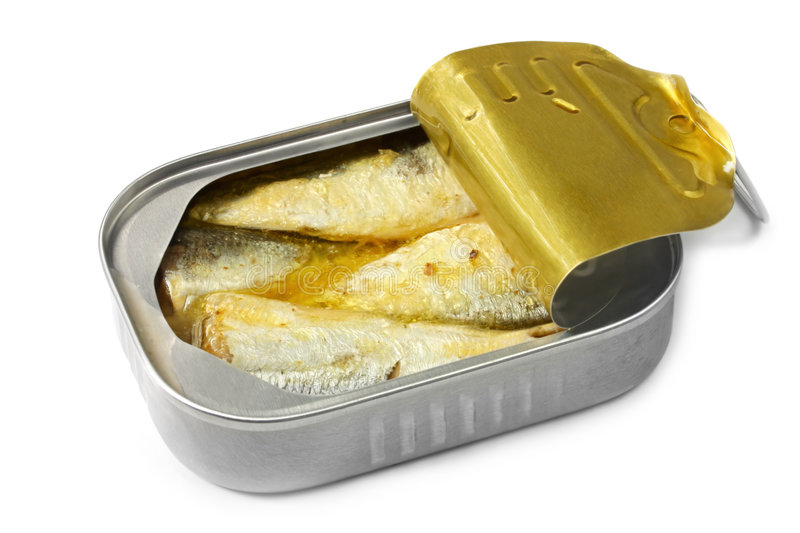 Can of Sardines. Open can of sardines, isolated on white with soft shadow royalty free stock images