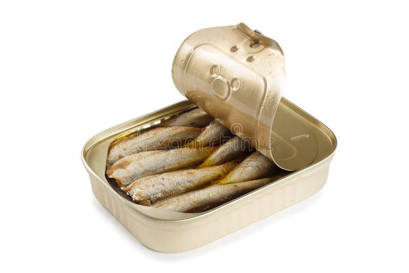 Can of sardines royalty free stock photos