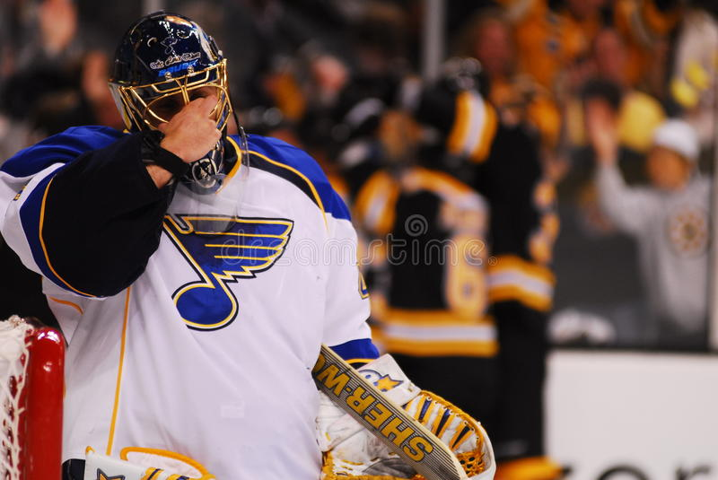 Can't. St. Louis goalie can't watch as the Boston Bruins celebrate a late 3rd period goal to tie up the game at 1-1 royalty free stock images