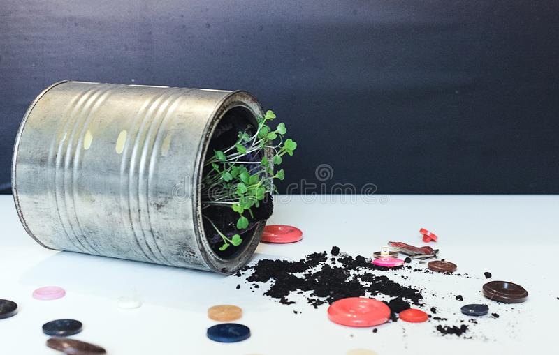 A can in which a green sprout grows, next to the can are many small buttons. The concept of ecology and life without trifles stock photo