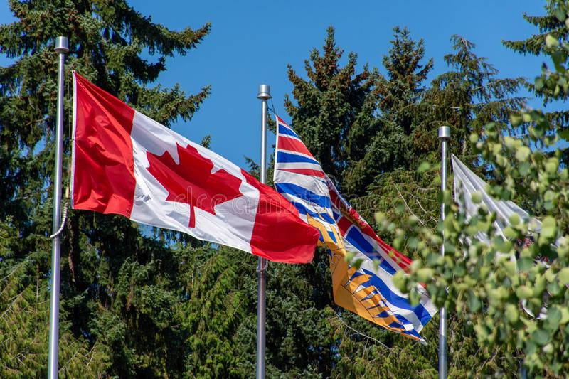 Canada and British Columbia BC flag blowing in the wind and trees on a bright sunny day stock photos