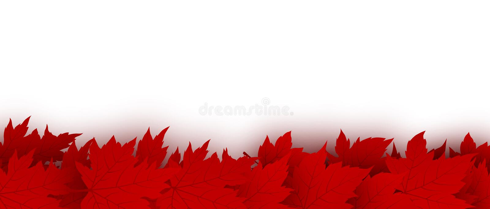 Canada day background design of red maple leaves stock illustration