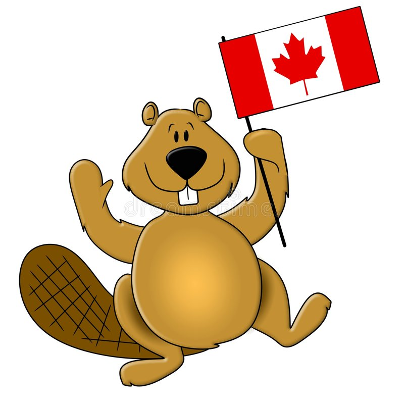 Canada Day Beaver Holding Flag. An illustration featuring the popular beaver holding a Canadian Flag for Canada Day