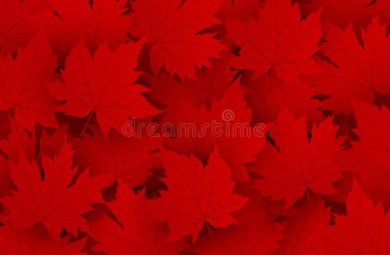 Canada day design of red maple leaves background vector illustration