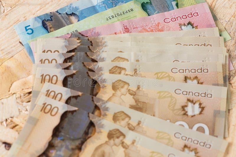Canada et argent de l'Europe avec le fond en bois images libres de droits