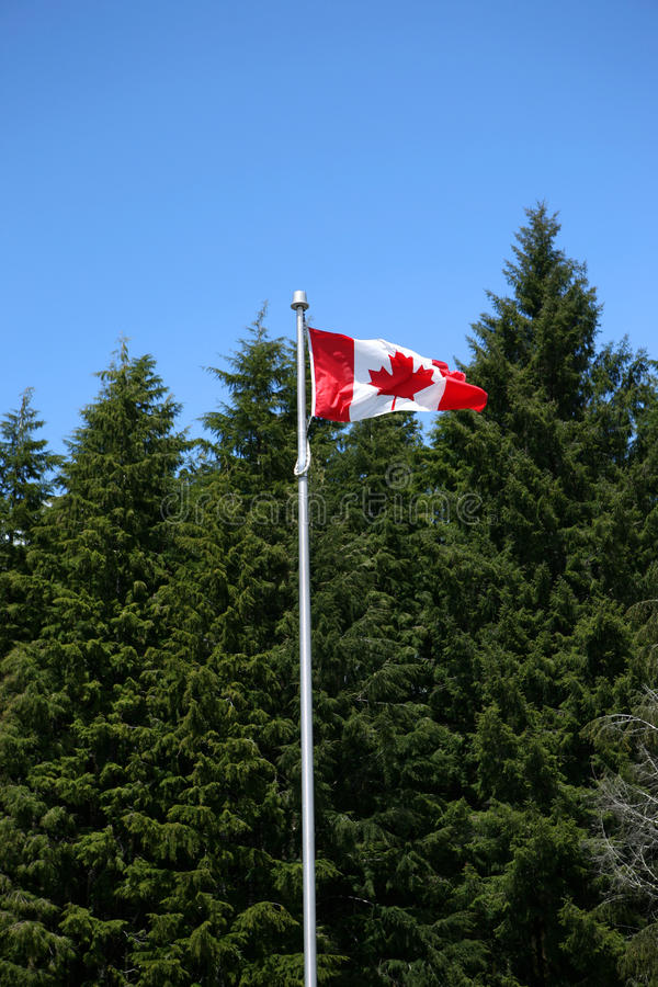 Download Canada flag stock photo. Image of flagpole, flagstaff - 27645712