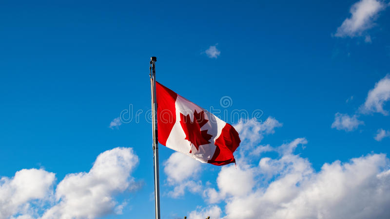 Canada flag. royalty free stock photography