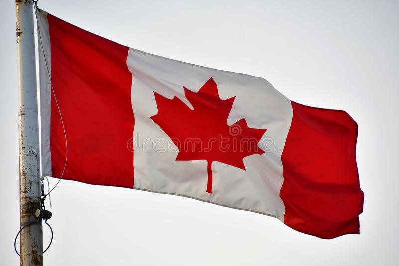 The Canada flag is waving in the sky.  royalty free stock photography