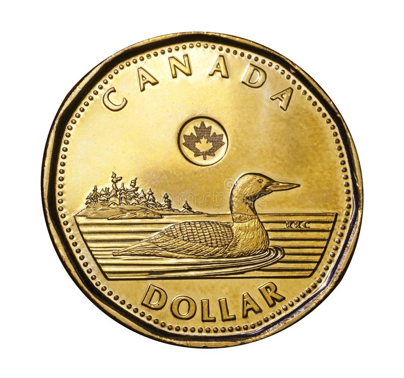 Free Canada`s One Dollar Coin Features A Loon Royalty Free Stock Photo - 139596885