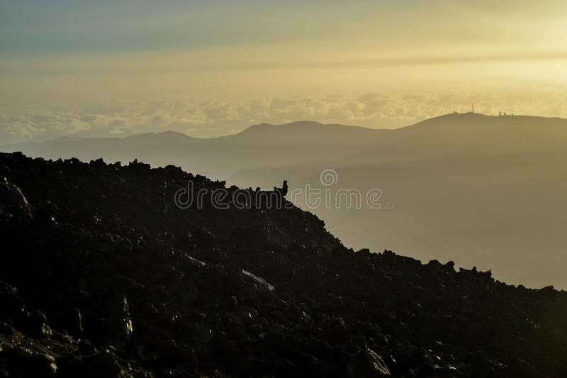 canadas Kanarka Del Wyspa las Spain teide Tenerife doliny wulkan zdjęcia stock
