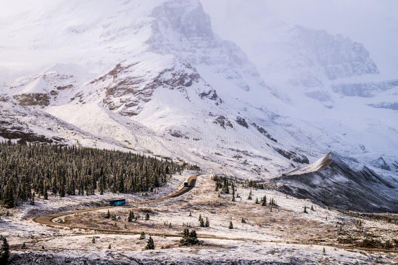 Canadese Athabasca-Gletsjer stock fotografie