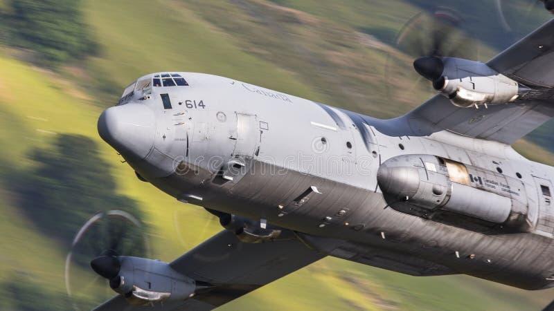 Canadese C130 Hercules tijdens de vlucht stock foto's