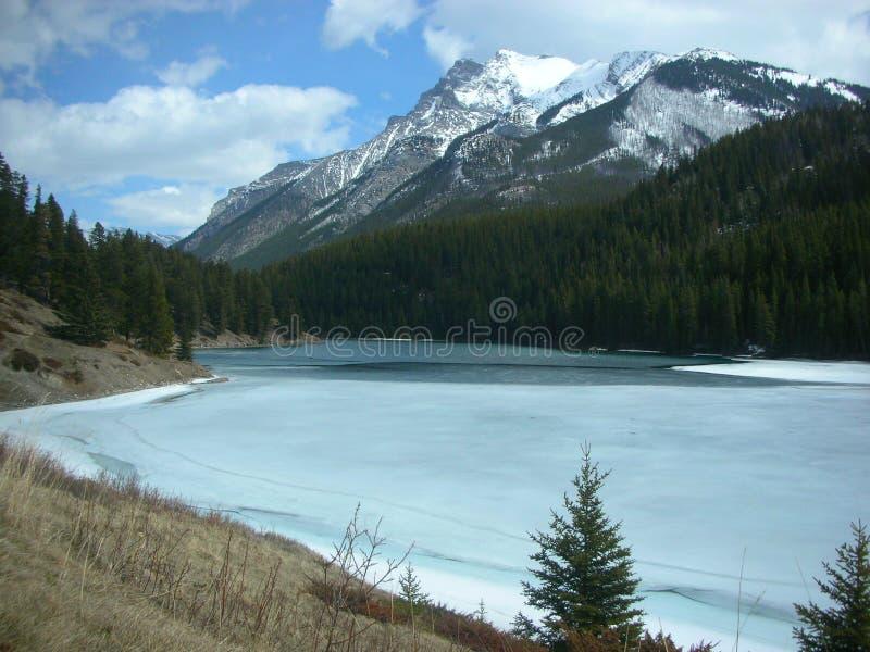 Canadese Rockies royalty-vrije stock afbeelding