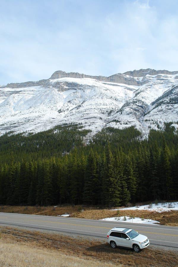 Canadese rockies van de winter royalty-vrije stock afbeeldingen
