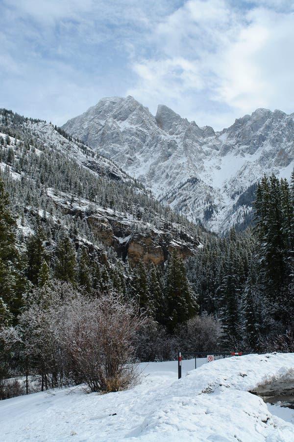 Canadese rockies van de winter stock foto's